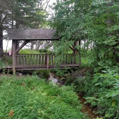 walking bridge across headwaters to 11th Crow Wing Lake